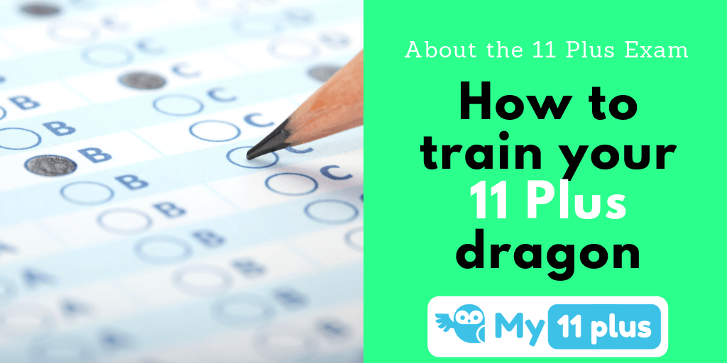 About The 11 Plus Exam – How To Train Your 11 Plus Dragon